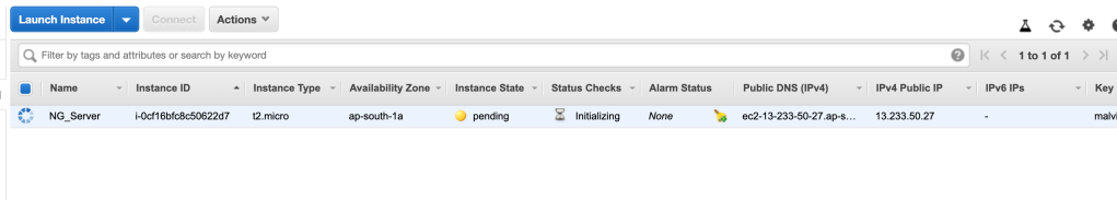 instance state